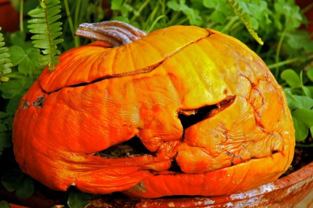 Image result for sad halloween